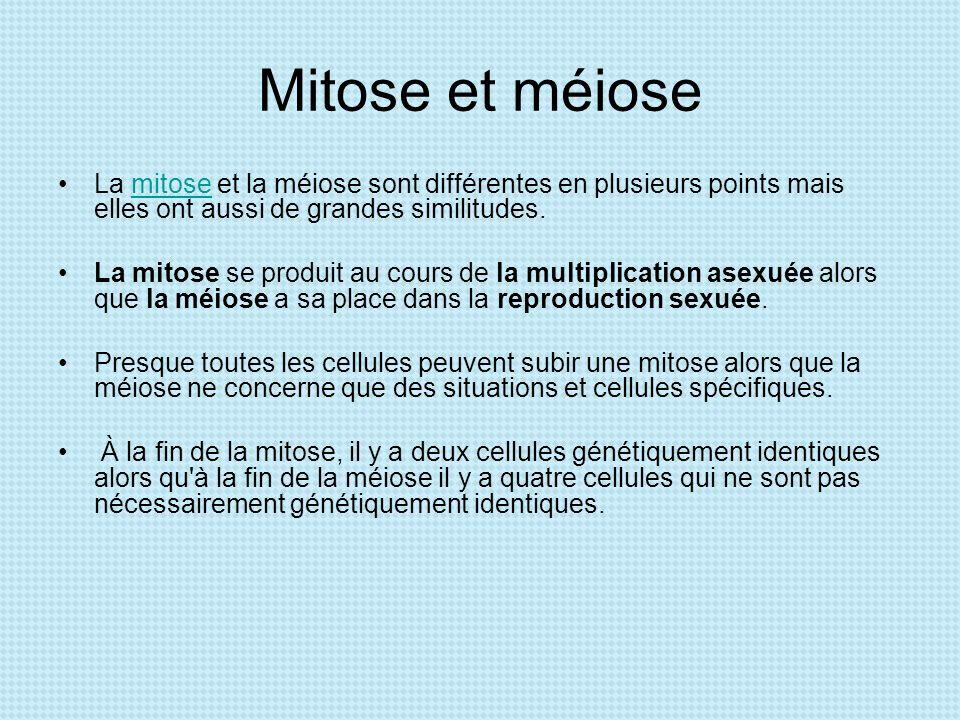 Mitose et méiose La mitose et la méiose sont différentes en plusieurs points mais elles ont aussi de grandes similitudes.mitose La mitose se produit a