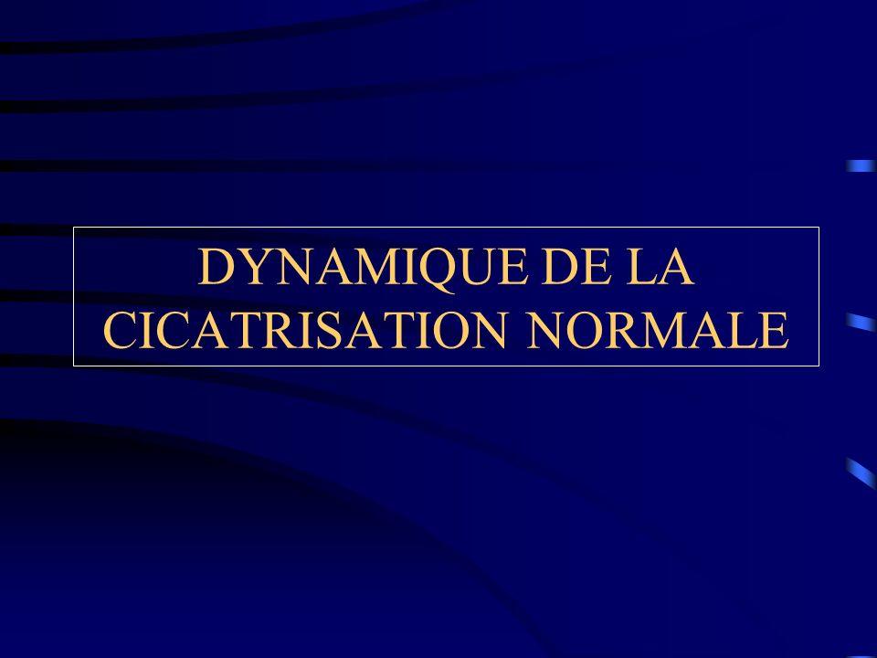 DYNAMIQUE DE LA CICATRISATION NORMALE
