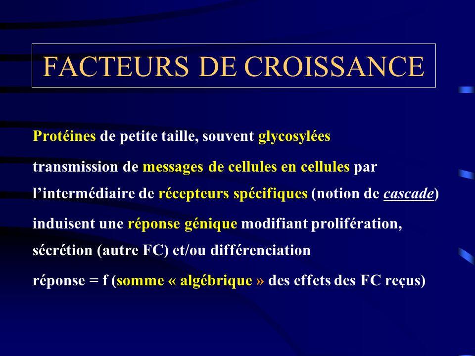 FACTEURS DE CROISSANCE Protéines de petite taille, souvent glycosylées transmission de messages de cellules en cellules par lintermédiaire de récepteu