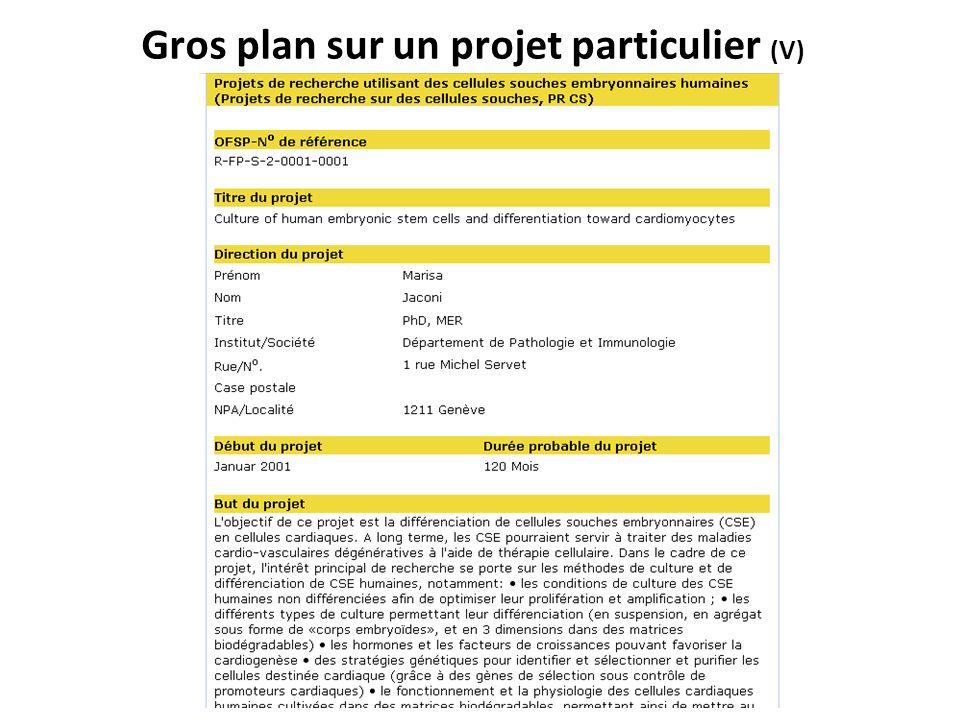 Gros plan sur un projet particulier (V)