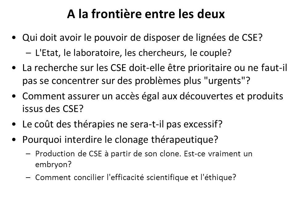 A la frontière entre les deux Qui doit avoir le pouvoir de disposer de lignées de CSE? –L'Etat, le laboratoire, les chercheurs, le couple? La recherch