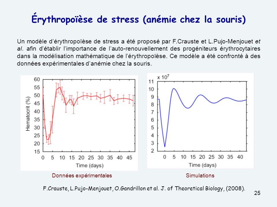 25 Érythropoïèse de stress (anémie chez la souris) Un modèle dérythropoïèse de stress a été proposé par F.Crauste et L.Pujo-Menjouet et al.