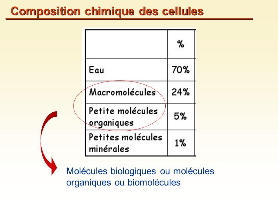 Molécules biologiques ou molécules organiques ou biomolécules Composition chimique des cellules