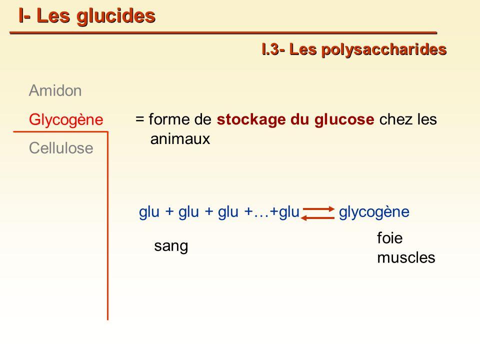 = forme de stockage du glucose chez les animaux glu + glu + glu +…+gluglycogène foie muscles I.3- Les polysaccharides Amidon Glycogène Cellulose I- Les glucides sang