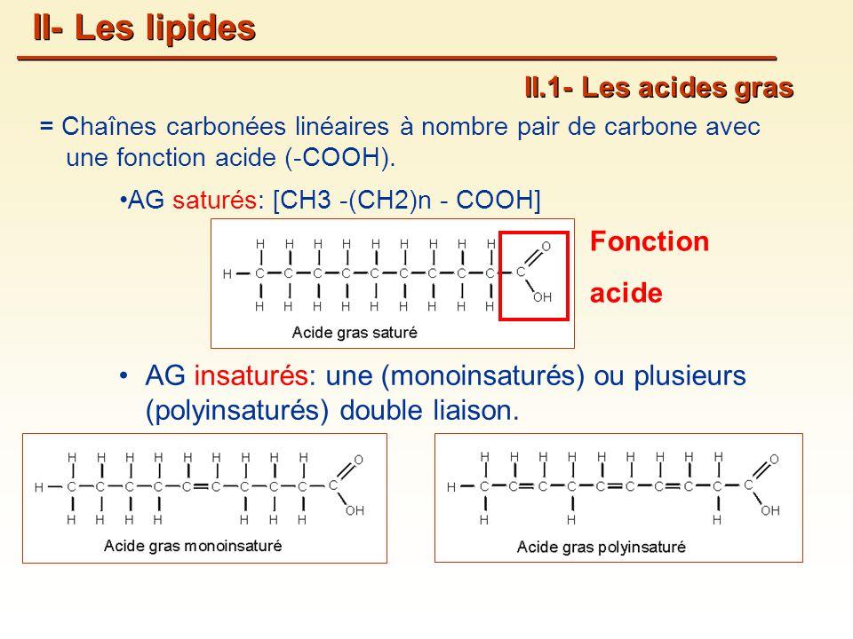= Chaînes carbonées linéaires à nombre pair de carbone avec une fonction acide (-COOH).