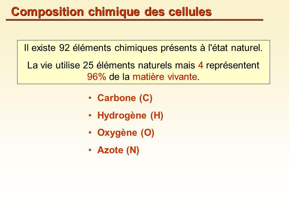 Carbone (C) Hydrogène (H) Oxygène (O) Azote (N) Il existe 92 éléments chimiques présents à l état naturel.