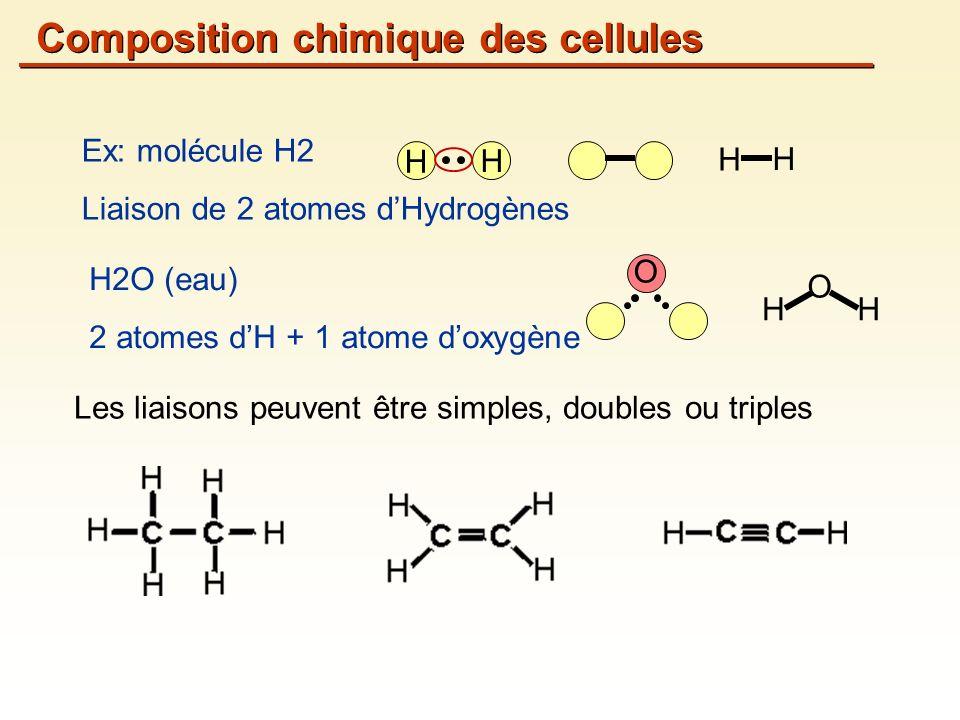 Les liaisons peuvent être simples, doubles ou triples Ex: molécule H2 Liaison de 2 atomes dHydrogènes H H H2O (eau) 2 atomes dH + 1 atome doxygène HH O H H O Composition chimique des cellules