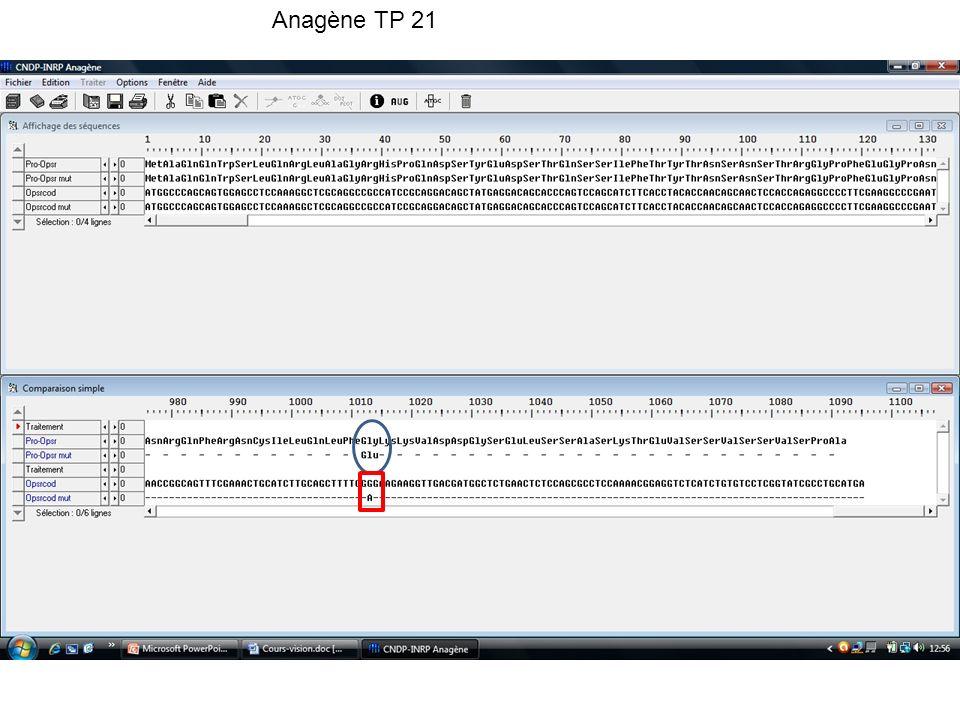Anagène TP 21