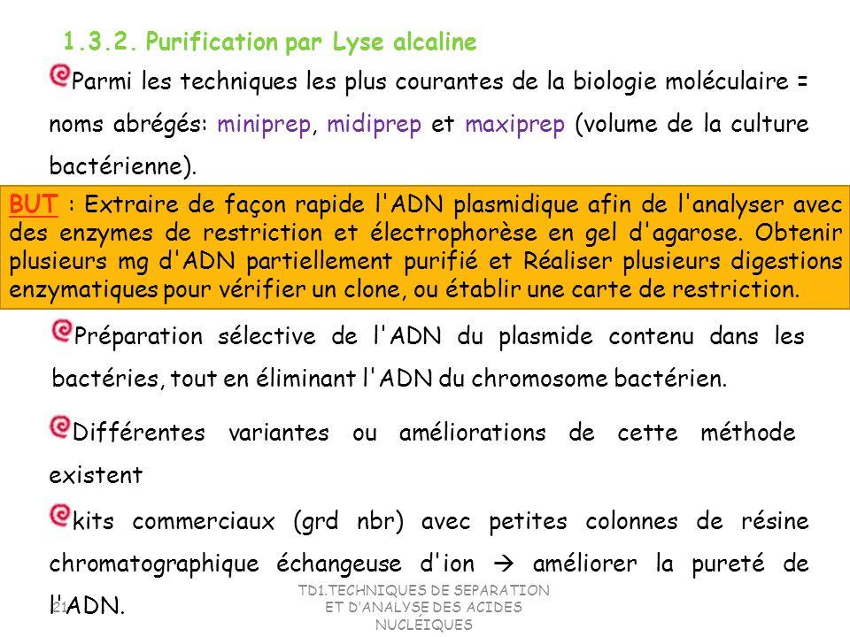 TD1.TECHNIQUES DE SEPARATION ET DANALYSE DES ACIDES NUCLÉIQUES 21 1.3.2. Purification par Lyse alcaline Parmi les techniques les plus courantes de la