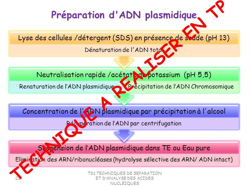 TD1.TECHNIQUES DE SEPARATION ET DANALYSE DES ACIDES NUCLÉIQUES 22 Suspension de lADN plasmidique dans TE ou Eau pure Elimination des ARN/ribonucléases