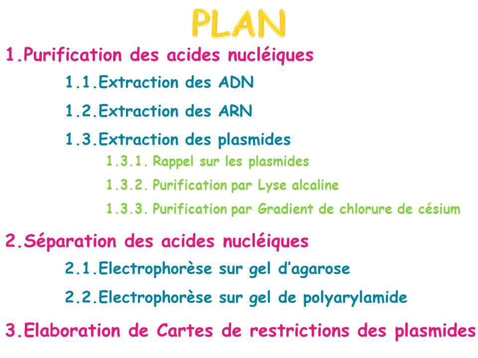 1.1.Extraction des ADN 1.2.Extraction des ARN 1.3.Extraction des plasmides 1.3.1.