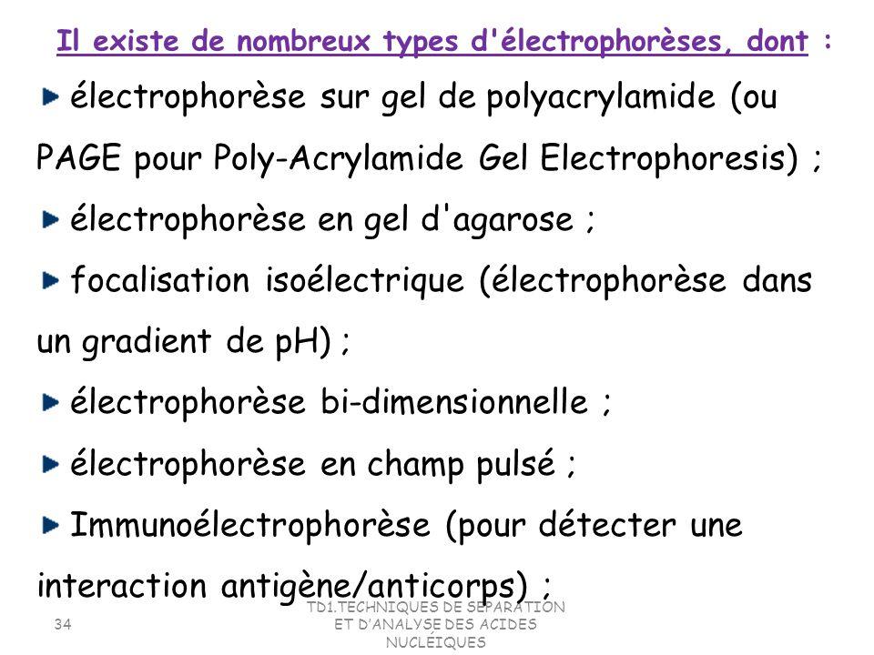 TD1.TECHNIQUES DE SEPARATION ET DANALYSE DES ACIDES NUCLÉIQUES 34 électrophorèse sur gel de polyacrylamide (ou PAGE pour Poly-Acrylamide Gel Electroph