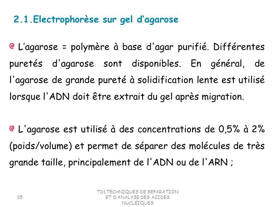 TD1.TECHNIQUES DE SEPARATION ET DANALYSE DES ACIDES NUCLÉIQUES 35 L'agarose est utilisé à des concentrations de 0,5% à 2% (poids/volume) et permet de