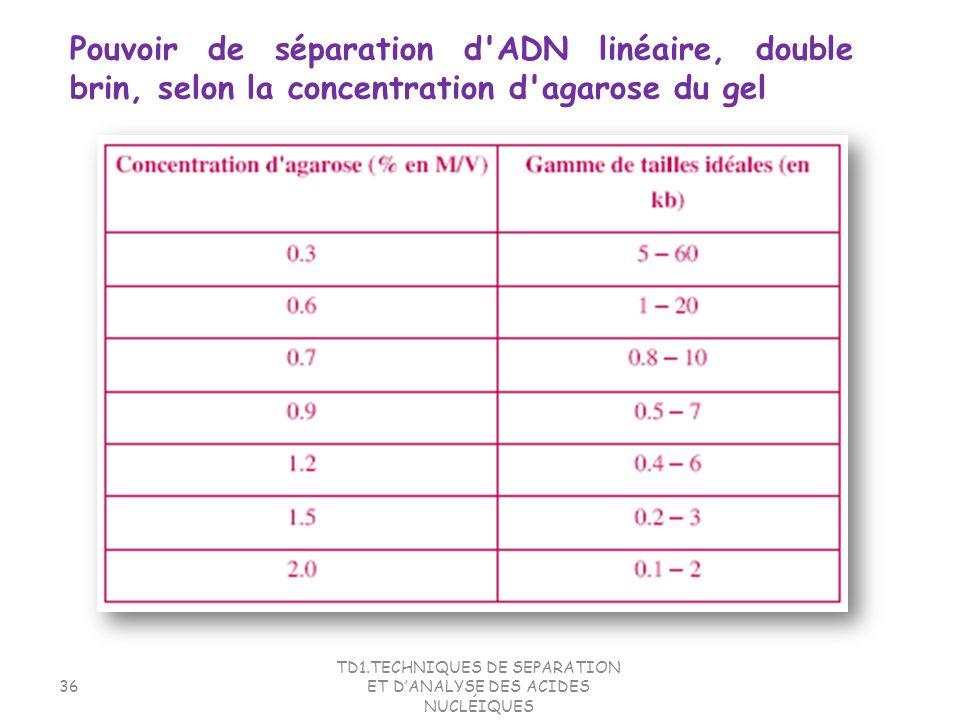 TD1.TECHNIQUES DE SEPARATION ET DANALYSE DES ACIDES NUCLÉIQUES 36 Pouvoir de séparation d'ADN linéaire, double brin, selon la concentration d'agarose