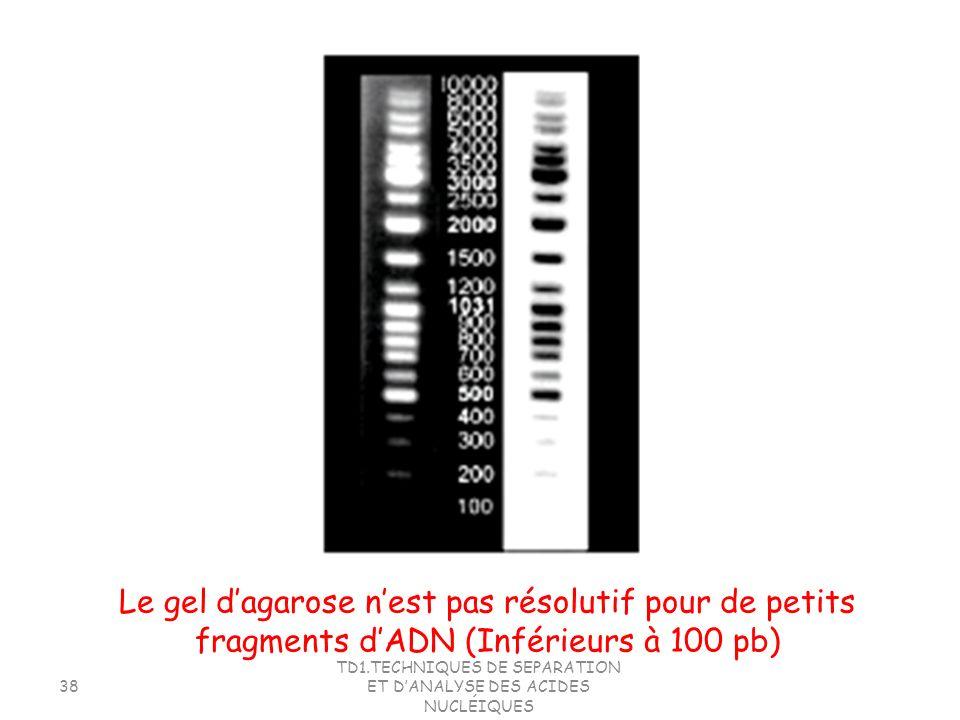 TD1.TECHNIQUES DE SEPARATION ET DANALYSE DES ACIDES NUCLÉIQUES 38 Le gel dagarose nest pas résolutif pour de petits fragments dADN (Inférieurs à 100 p