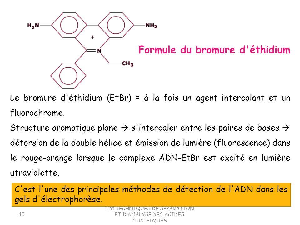 TD1.TECHNIQUES DE SEPARATION ET DANALYSE DES ACIDES NUCLÉIQUES 40 Le bromure d'éthidium (EtBr) = à la fois un agent intercalant et un fluorochrome. St