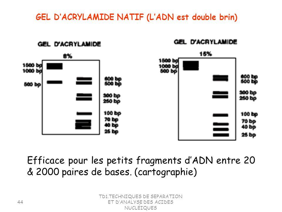 TD1.TECHNIQUES DE SEPARATION ET DANALYSE DES ACIDES NUCLÉIQUES 44 Efficace pour les petits fragments dADN entre 20 & 2000 paires de bases. (cartograph