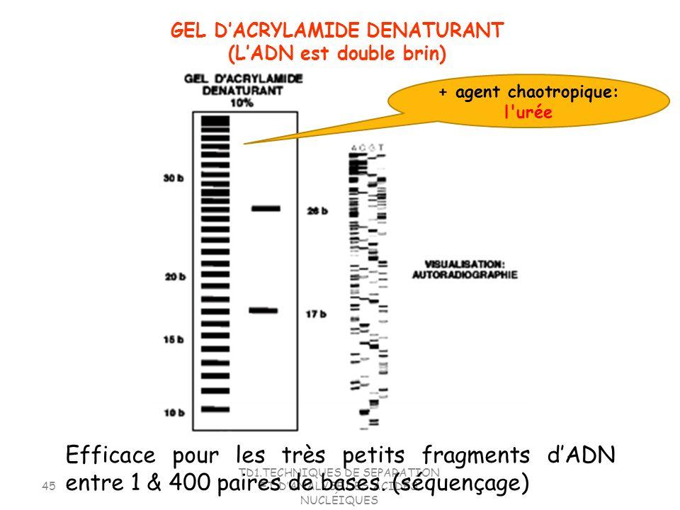 TD1.TECHNIQUES DE SEPARATION ET DANALYSE DES ACIDES NUCLÉIQUES 45 Efficace pour les très petits fragments dADN entre 1 & 400 paires de bases. (séquenç