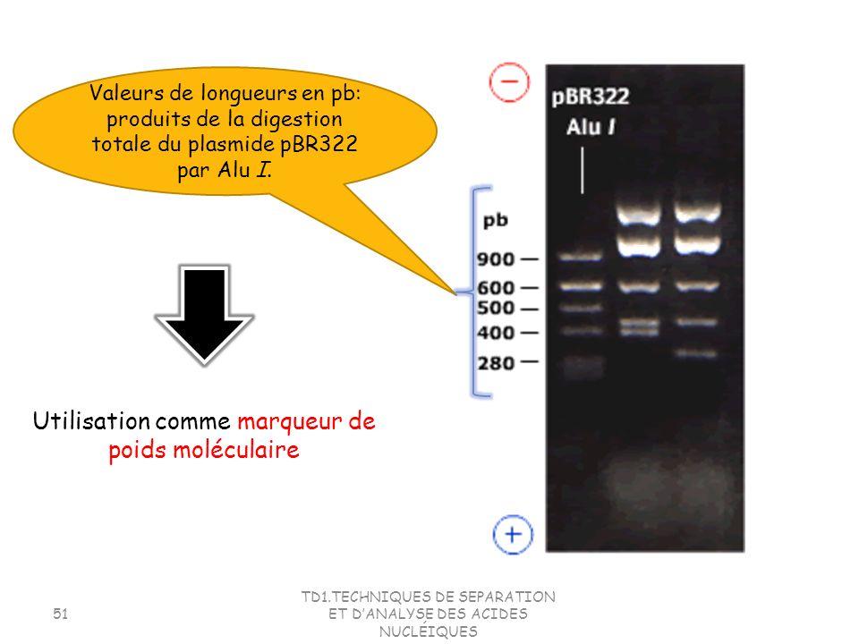 TD1.TECHNIQUES DE SEPARATION ET DANALYSE DES ACIDES NUCLÉIQUES 51 Valeurs de longueurs en pb: produits de la digestion totale du plasmide pBR322 par A