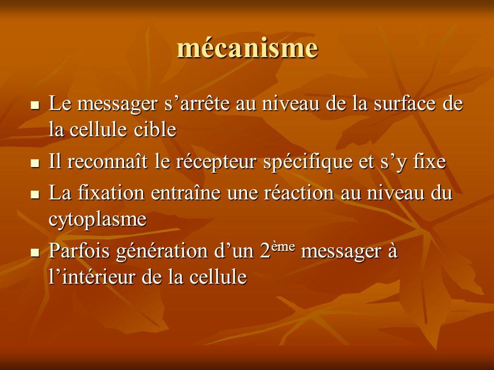 mécanisme Le messager sarrête au niveau de la surface de la cellule cible Le messager sarrête au niveau de la surface de la cellule cible Il reconnaît