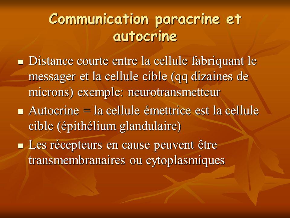 Communication paracrine et autocrine Distance courte entre la cellule fabriquant le messager et la cellule cible (qq dizaines de microns) exemple: neurotransmetteur Distance courte entre la cellule fabriquant le messager et la cellule cible (qq dizaines de microns) exemple: neurotransmetteur Autocrine = la cellule émettrice est la cellule cible (épithélium glandulaire) Autocrine = la cellule émettrice est la cellule cible (épithélium glandulaire) Les récepteurs en cause peuvent être transmembranaires ou cytoplasmiques Les récepteurs en cause peuvent être transmembranaires ou cytoplasmiques