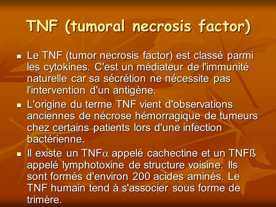 TNF (tumoral necrosis factor) Le TNF (tumor necrosis factor) est classé parmi les cytokines. C'est un médiateur de l'immunité naturelle car sa sécréti