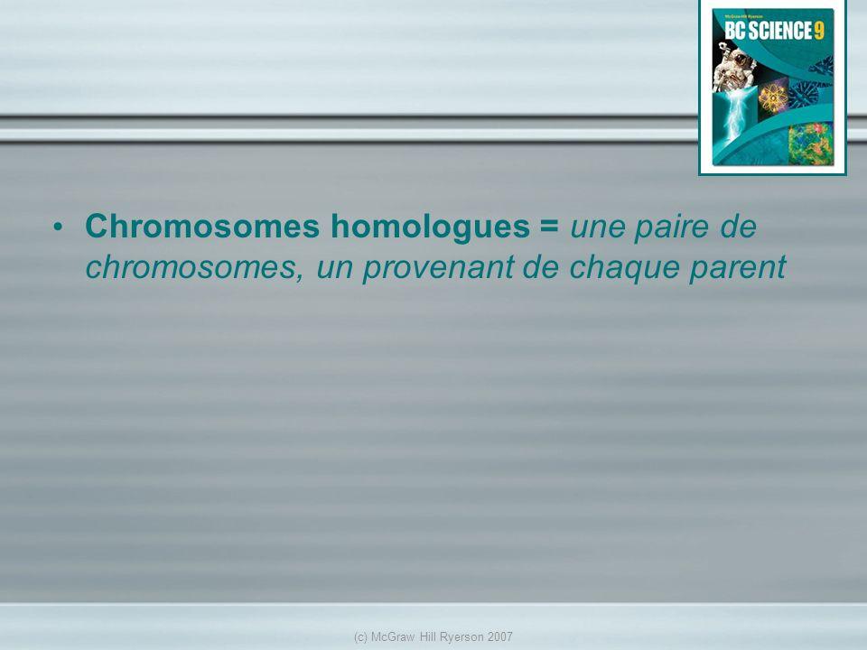 Chromosomes homologues = une paire de chromosomes, un provenant de chaque parent (c) McGraw Hill Ryerson 2007