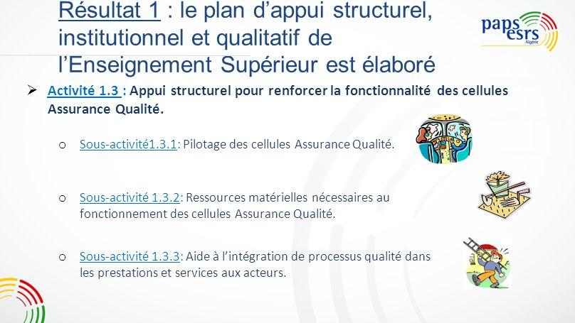 Résultat 1 : le plan dappui structurel, institutionnel et qualitatif de lEnseignement Supérieur est élaboré Activité 1.1 : Activité 1.2 : Activité 1.3 : Résumé Objectifs qualitatifs : Renforcer les systèmes AQ par structuration de larchitecture.