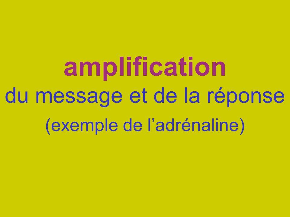amplification du message et de la réponse (exemple de ladrénaline)