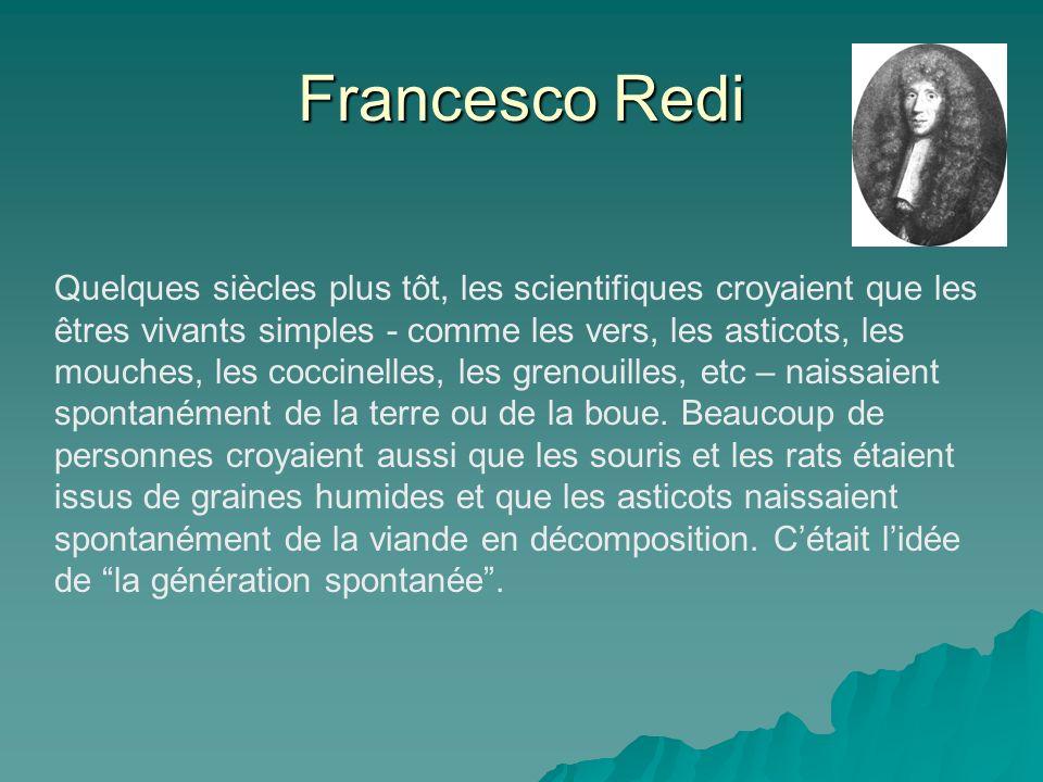 Francesco Redi Quelques siècles plus tôt, les scientifiques croyaient que les êtres vivants simples - comme les vers, les asticots, les mouches, les coccinelles, les grenouilles, etc – naissaient spontanément de la terre ou de la boue.