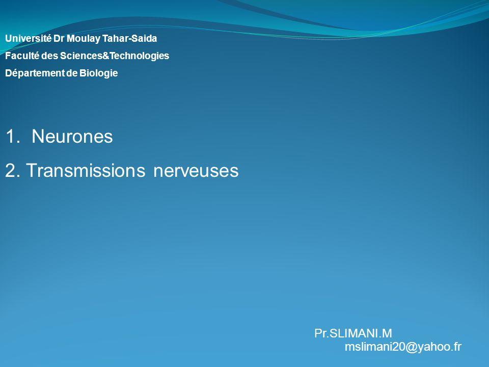 Université Dr Moulay Tahar-Saida Faculté des Sciences&Technologies Département de Biologie 1. Neurones 2. Transmissions nerveuses Pr.SLIMANI.M msliman