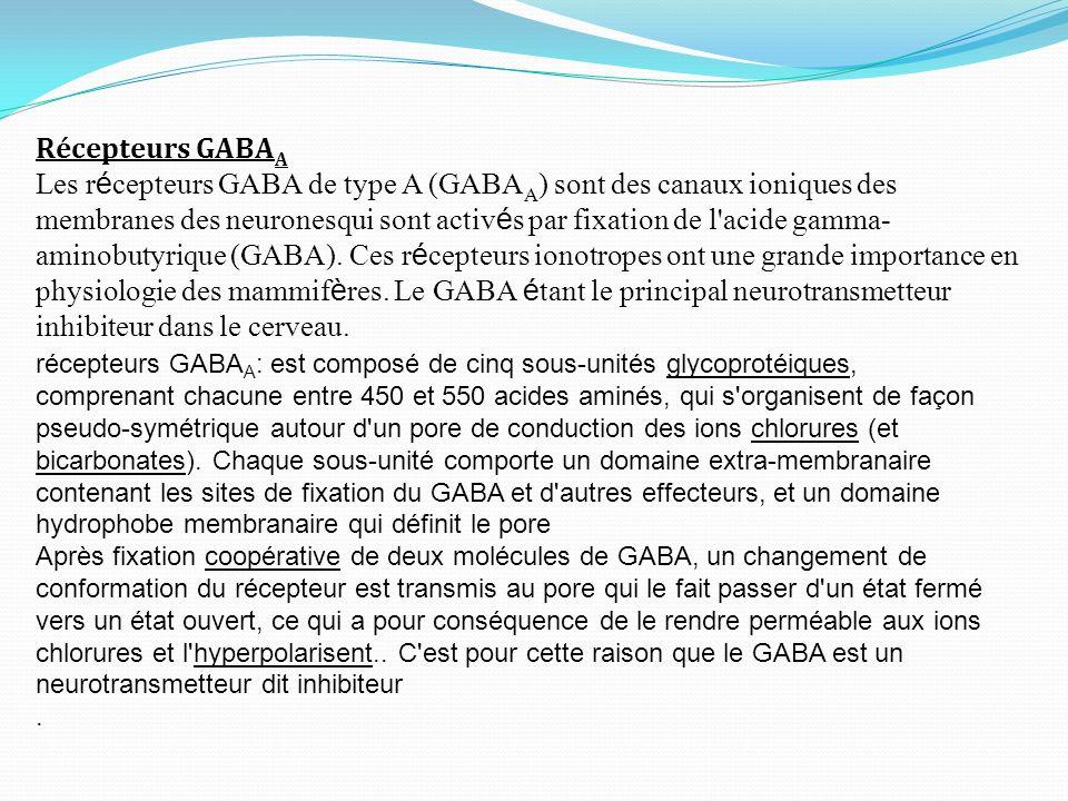 Récepteurs GABA A Les r é cepteurs GABA de type A (GABA A ) sont des canaux ioniques des membranes des neuronesqui sont activ é s par fixation de l'ac
