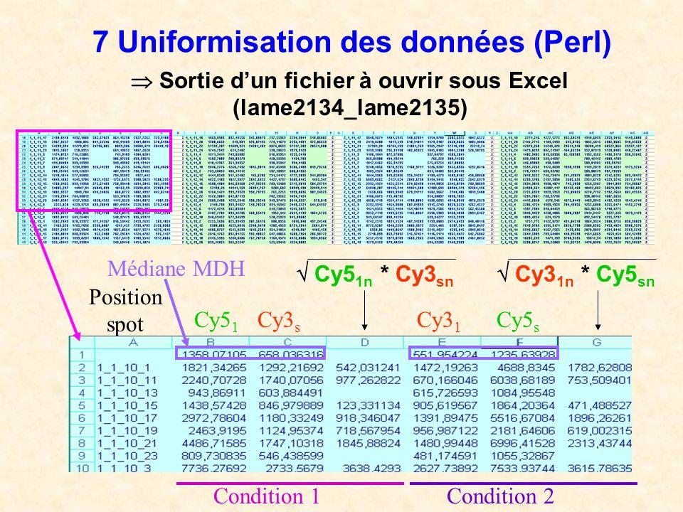 7 Uniformisation des données (Perl) Position spot Sortie dun fichier à ouvrir sous Excel (lame2134_lame2135) Cy5 1 Cy3 s Cy5 1n * Cy3 sn Cy3 1 Cy5 s C