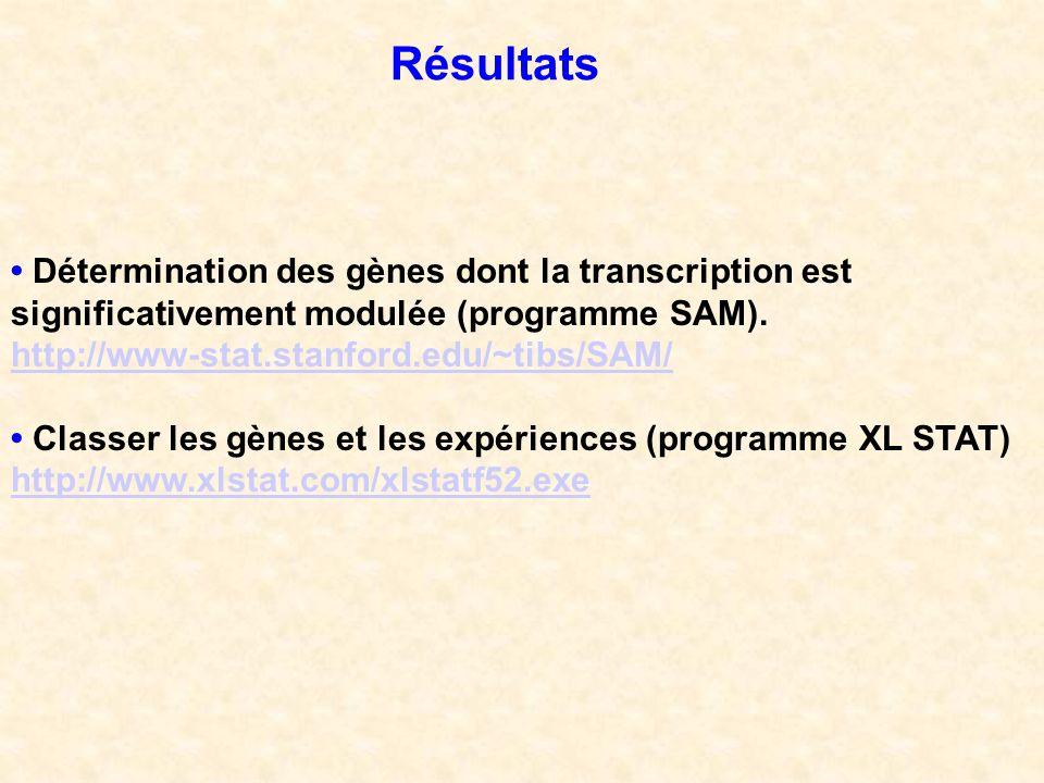 Résultats Détermination des gènes dont la transcription est significativement modulée (programme SAM). http://www-stat.stanford.edu/~tibs/SAM/ Classer