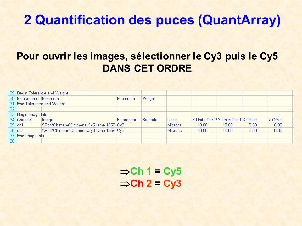 Pour ouvrir les images, sélectionner le Cy3 puis le Cy5 DANS CET ORDRE 2 Quantification des puces (QuantArray) Ch 1 = Cy5 Ch 2 = Cy3