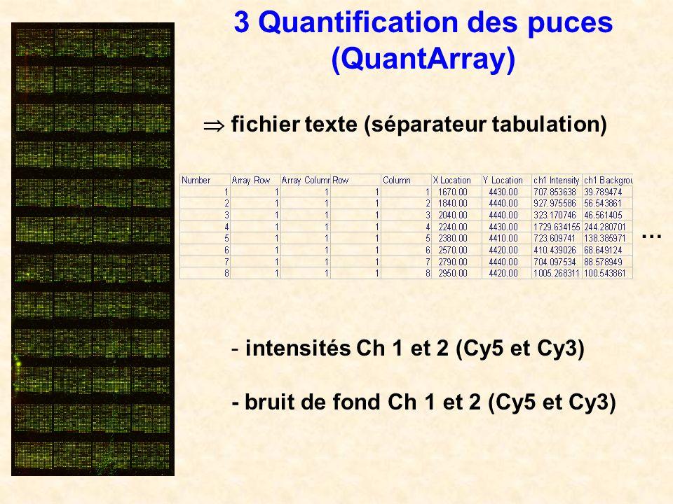 … - intensités Ch 1 et 2 (Cy5 et Cy3) - bruit de fond Ch 1 et 2 (Cy5 et Cy3) fichier texte (séparateur tabulation) 3 Quantification des puces (QuantAr