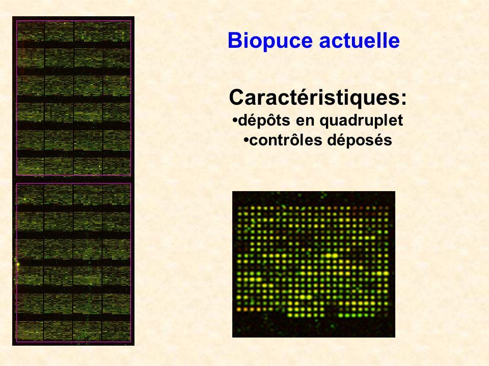 Caractéristiques: dépôts en quadruplet contrôles déposés Biopuce actuelle