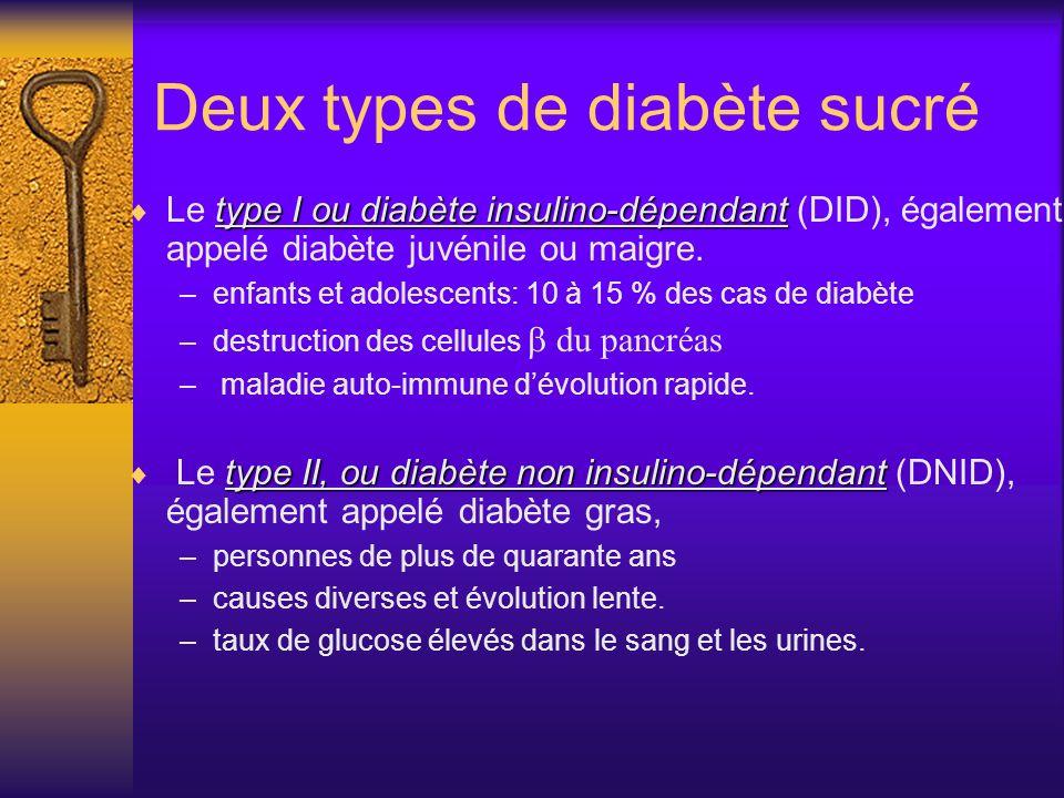 Diabète Signes Urines abondantes Soif intense Amaigrissement importantRisques Insuffisance rénale Atteinte de la rétine Accidents cardiovasculaires In