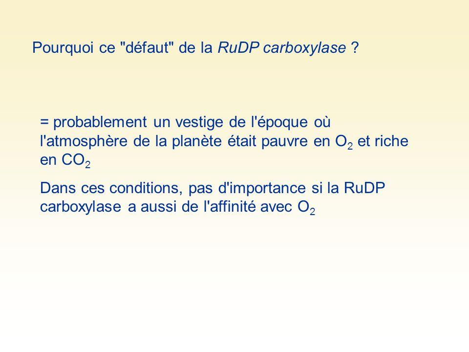 Pourquoi ce défaut de la RuDP carboxylase .