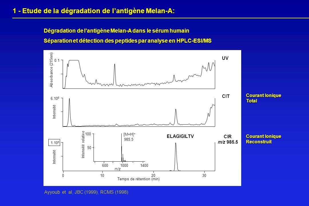 Séparation et détection des peptides par analyse en HPLC-ESI/MS Dégradation de lantigène Melan-A dans le sérum humain 1 - Etude de la dégradation de l