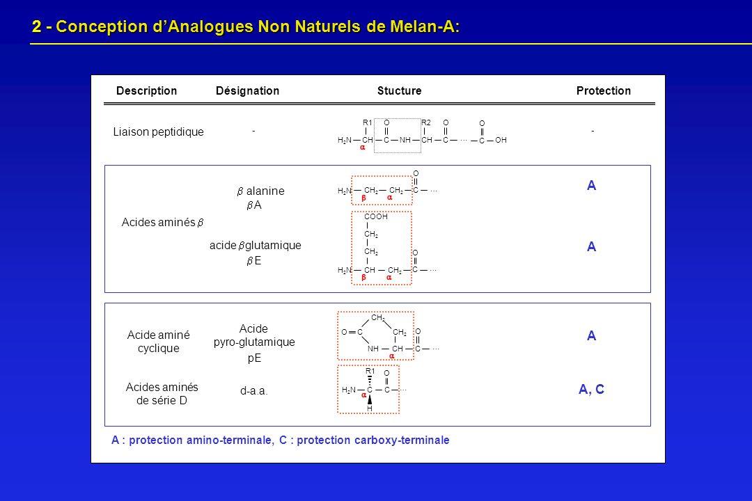 2 - Conception dAnalogues Non Naturels de Melan-A: 2 - Conception dAnalogues Non Naturels de Melan-A: NH C CH CH 2 C O … O Acide aminé cyclique Acide