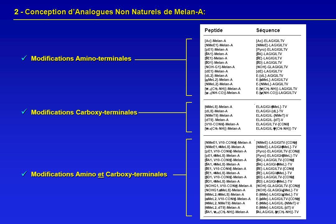 2 - Conception dAnalogues Non Naturels de Melan-A: 2 - Conception dAnalogues Non Naturels de Melan-A: Modifications Carboxy-terminales Modifications A