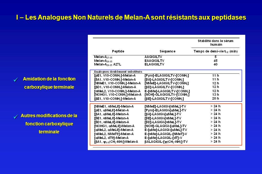 Amidation de la fonction carboxylique terminale Autres modifications de la fonction carboxylique terminale I – Les Analogues Non Naturels de Melan-A s