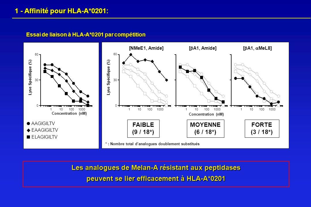 Les analogues de Melan-A résistant aux peptidases peuvent se lier efficacement à HLA-A*0201 Essai de liaison à HLA-A*0201 par compétition Lyse Spécifi