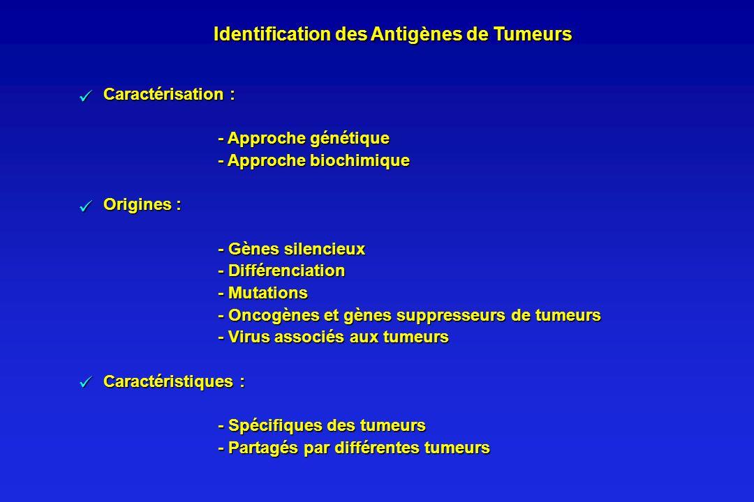 Identification des Antigènes de Tumeurs Caractérisation : - Approche génétique - Approche biochimique Origines : - Gènes silencieux - Différenciation