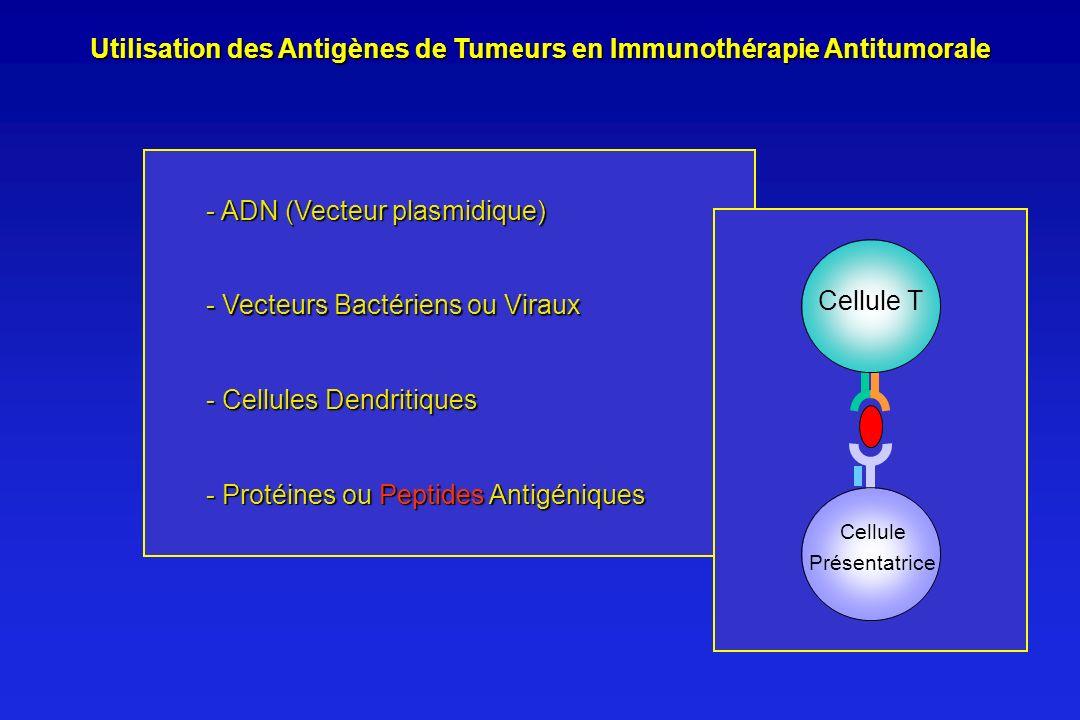 Utilisation des Antigènes de Tumeurs en Immunothérapie Antitumorale - Cellules Dendritiques - ADN (Vecteur plasmidique) - Protéines ou Peptides Antigé