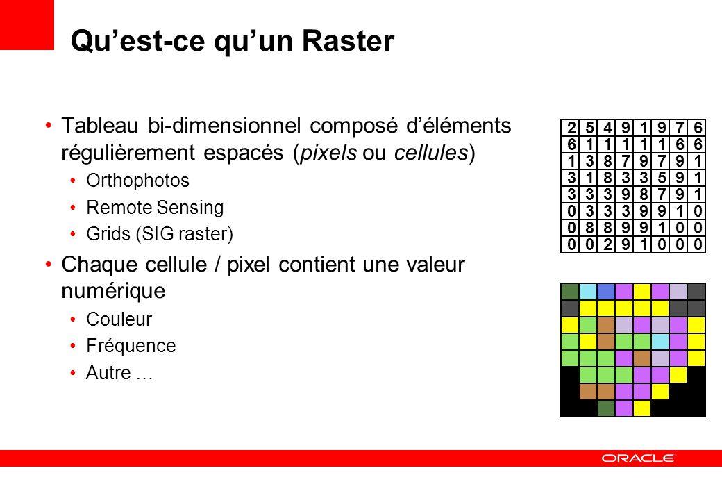 Cellules et Bandes Un pixel peut avoir plusieurs valeurs Une image RVB a trois valeurs par pixel (une valeur pour chaque couleur) Une image satellite peut associer un grand nombre de valeurs à chaque pixel (une par bande de fréquence observée) Les valeurs de même nature sont groupées en bandes Une image RGB a 3 bandes Une image multi-spectrale à 4 canaux possède 4 bandes 61111661 13879197 31833195 33398197 03339019 08899001 00291000 25491679 61111661 13879197 31833195 33398197 03339019 08899001 00291000 25491679 61111661 13879197 31833195 33398197 03339019 08899001 00291000 25491679