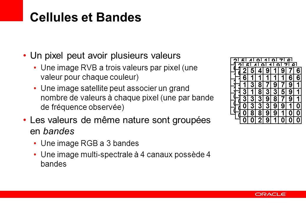 Cellules et Bandes Un pixel peut avoir plusieurs valeurs Une image RVB a trois valeurs par pixel (une valeur pour chaque couleur) Une image satellite