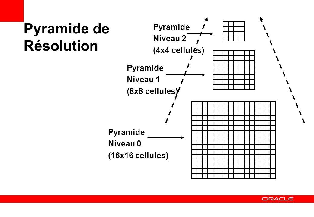 Pyramide de Résolution Pyramide Niveau 0 (16x16 cellules) Pyramide Niveau 1 (8x8 cellules) Pyramide Niveau 2 (4x4 cellules)