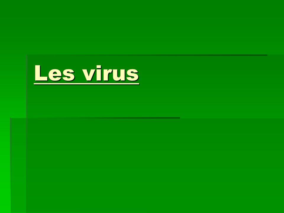 Virus dinfluenza